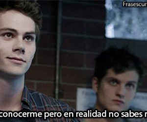 frases, gif, and teen wolf image
