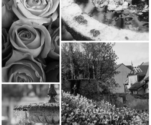 black and white, flowers, and love image