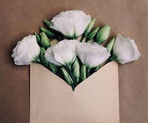 flowers, white, and envelope image