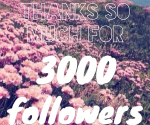 love, 3000, and followers image