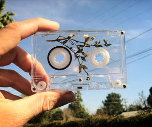 cassette, flower, and pale image