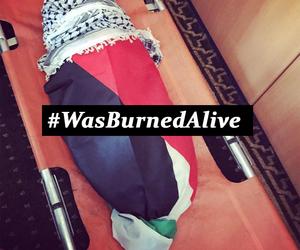 palestine, israhell, and فلسطين image
