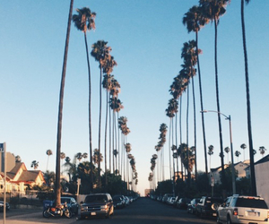 Beverly Hills, california, and los angeles image