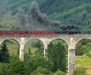 harry potter, train, and wizard image