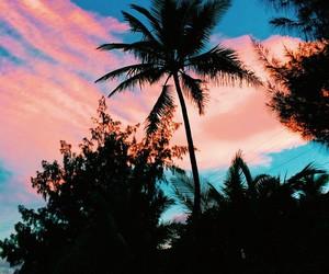 amazing, beach, and photography image