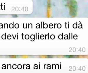 rami, radici, and frasi italiane image
