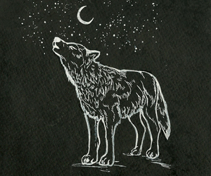 art, drawing, and howling image