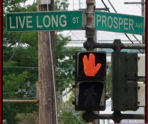 funny, photo, and prosper image