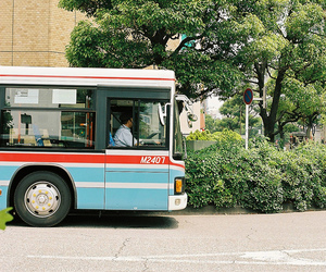bus and photography image