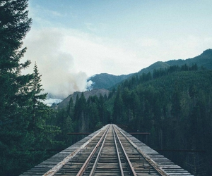 sky, forest, and train image