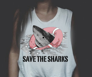 fashion, graphic tee, and shark image