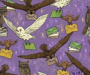 owl and harry potter image
