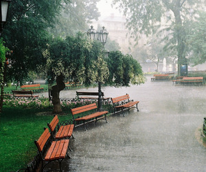 park, sad, and rain image