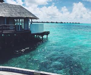 sea, ocean, and beach image