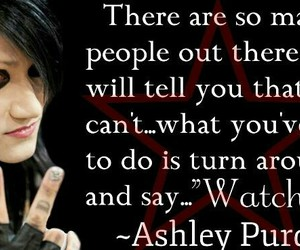 bvb and ashley purdy image