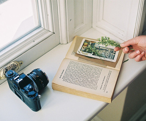 book, camera, and flowers image