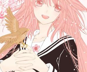 anime and kobato image