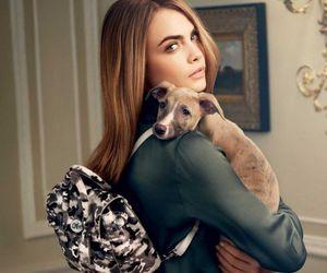 cara delevingne, model, and dog image