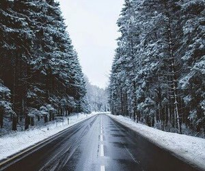 snow, road, and winter image