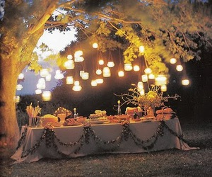 light, tree, and table image