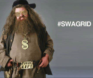 harry potter, hagrid, and swag image