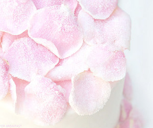 petals, white, and cake image