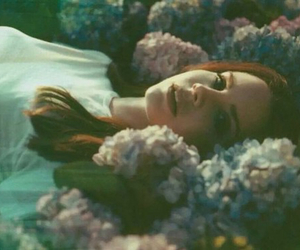 flowers, beautiful, and lana del rey image