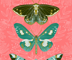 art, art for sale, and butterflies image