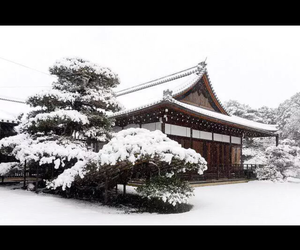 japan, snow, and Temple image