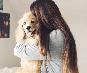 dog, girl, and cute image
