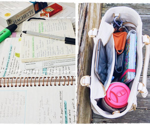 organization, study, and work image