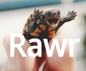 baby, rawr, and sea image
