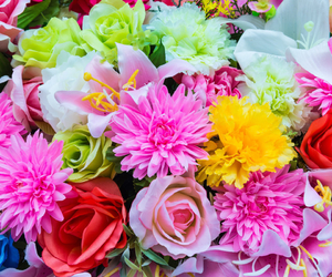 flores and flowers image