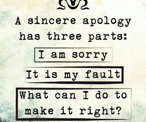 quotes, apology, and sorry image