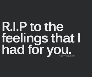 feelings, quote, and rip image