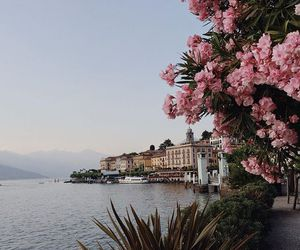 architecture, lake, and pink image