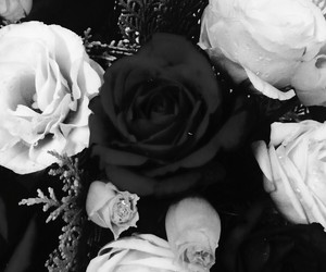 black, flowers, and gift image