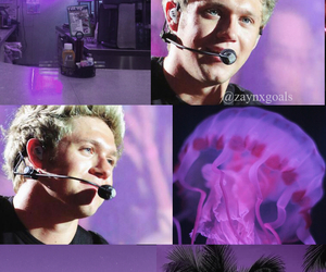 one direction, wallpaper, and niall horan image