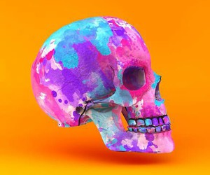 skull, wallpaper, and iphone image