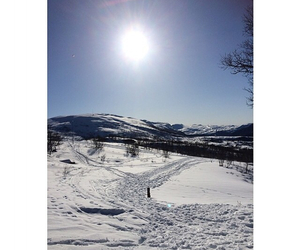 snow, winter, and Sunny image