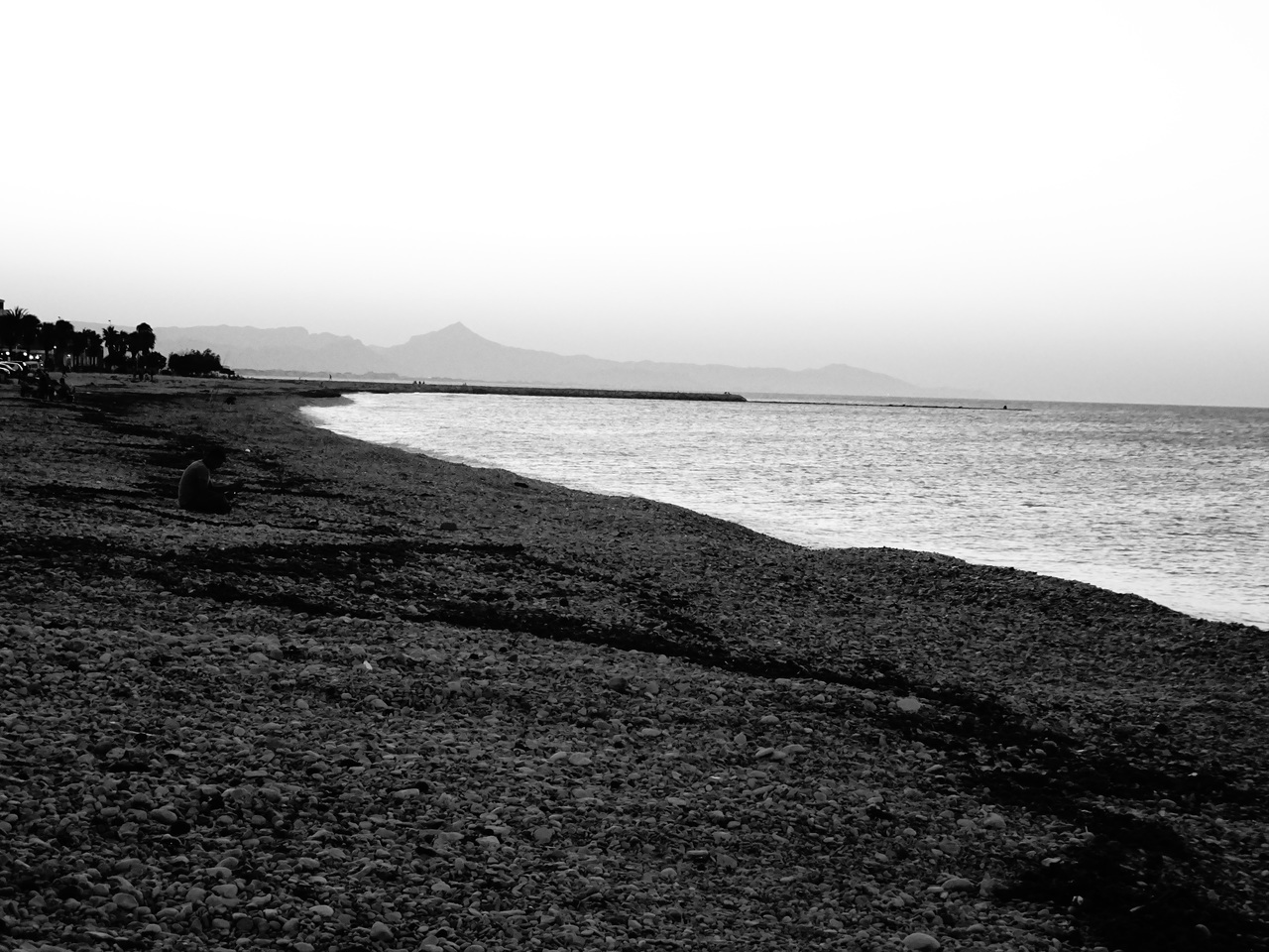 alone, beach, and black and white image