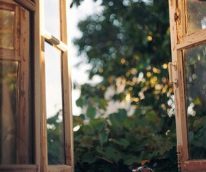 vintage, window, and nature image
