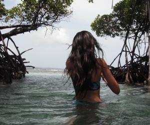 beach, paradise, and sumer image