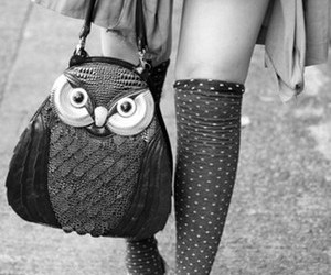 fashion, owl, and bag image