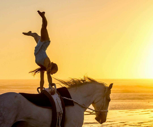 horse, sunset, and vaulting image