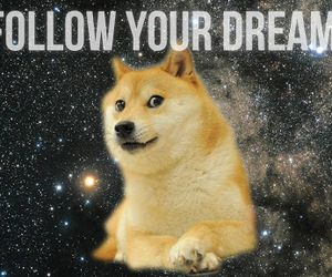 doge, dreams, and dog image