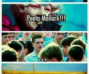 funny, the hunger games, and lol image