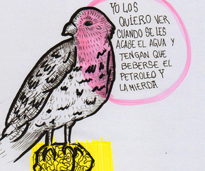 frases and medio ambiente image