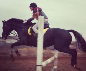 horse, jumping, and fly image