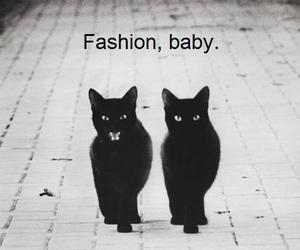 animals, baby, and black image